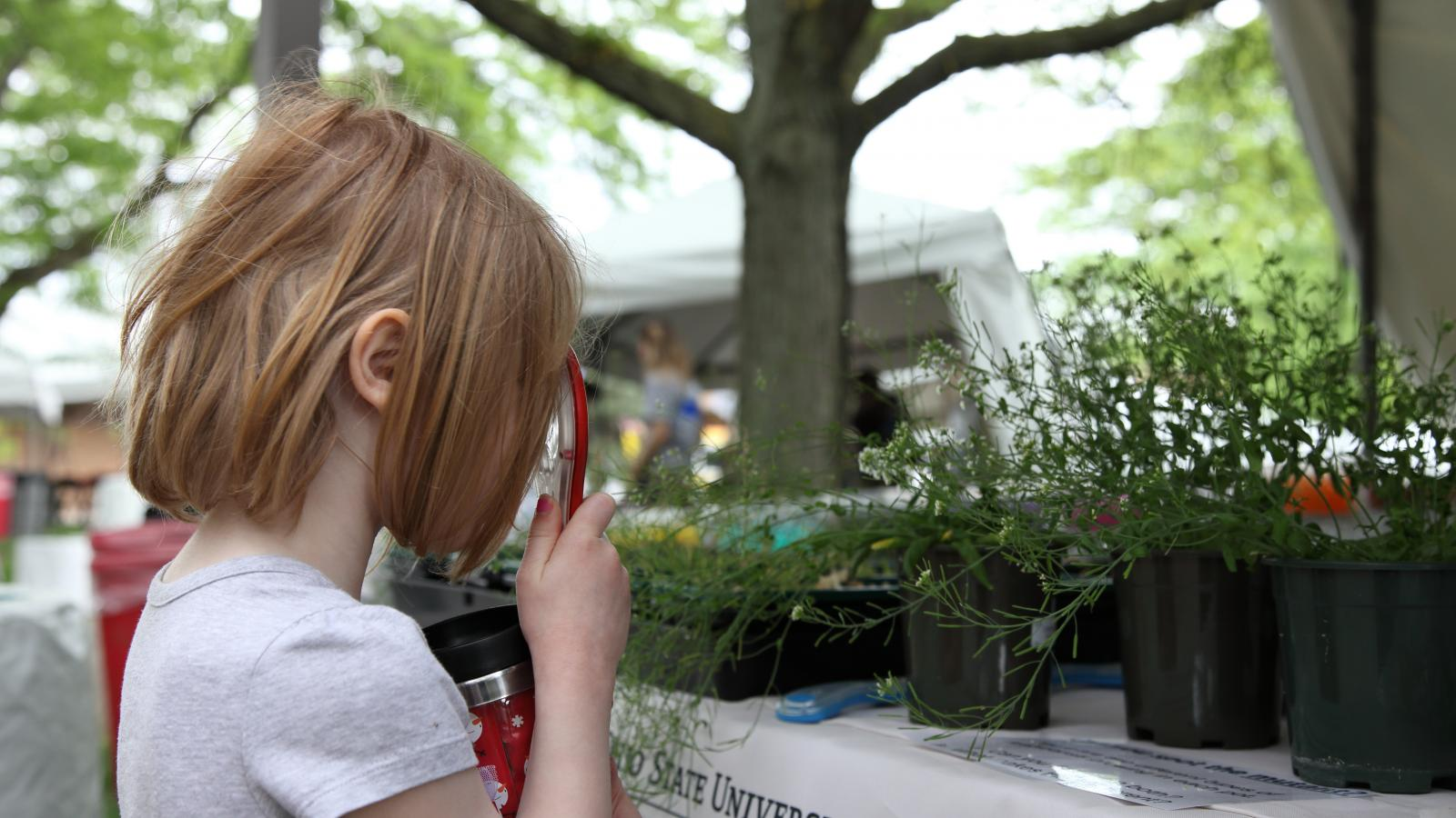 A young child explores Arabidopsis with a magnifying glass at WestFest 2018