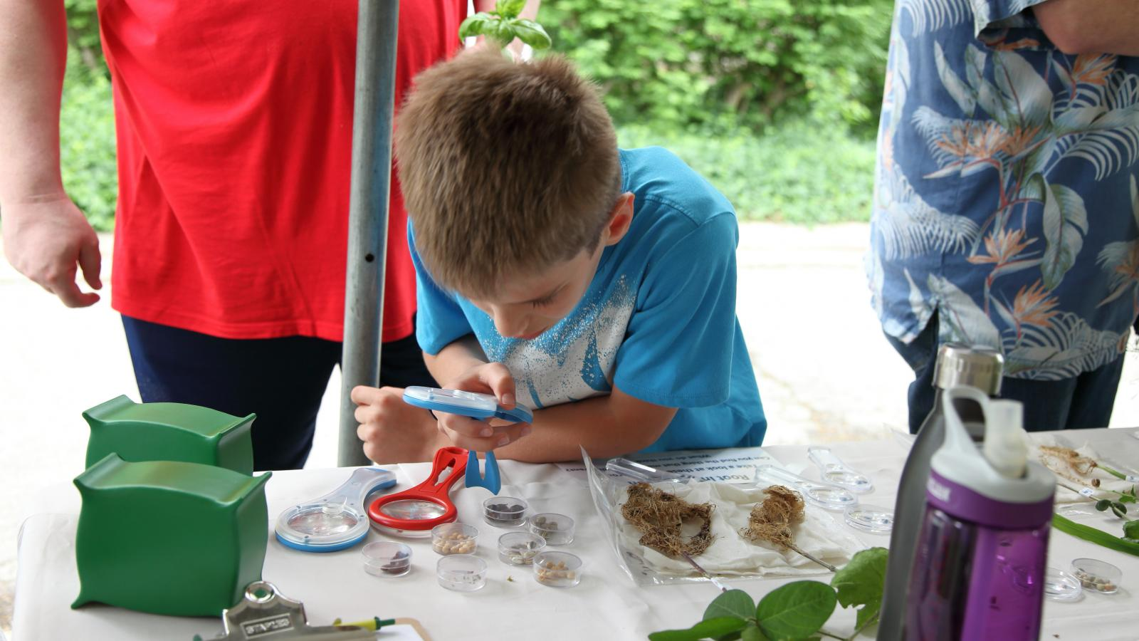 A young person explores plants at WestFest 2018